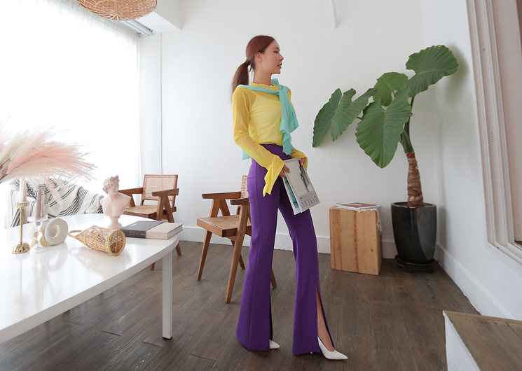 two line pants (purple)